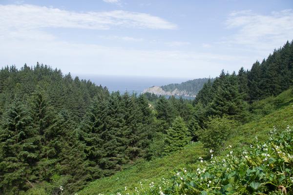 view of Cape Falcon