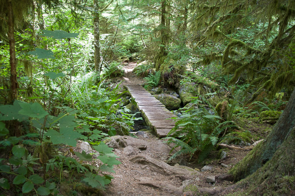 Opal Creek hike
